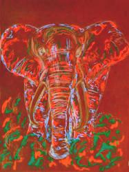 Psychedelphant by gareth0804