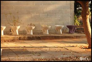 Toilets by yaelse