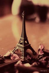 left Paris behind by unknown-dark