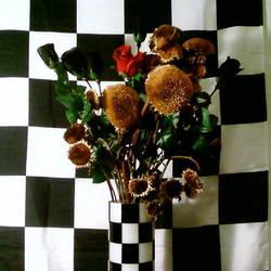 flower checks by petetyson