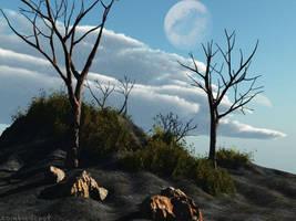 Dead Tree by zombiedepot
