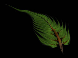 Forest Green Fern Frond by Gibson125