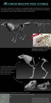 3D Skeleton Wolf Tutorial by 100chihuahuas