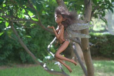 Dragonfly fairy - 03 by alaskabody-dolls