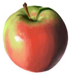 Apple study by quark777