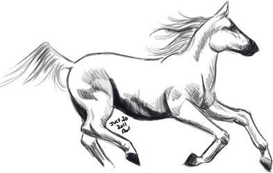 Badly drawn horsey by quark777