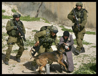 When dogs ravage human dignity by issam-zerr