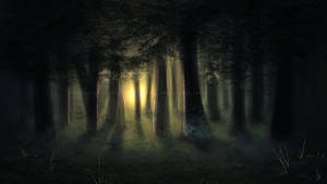 Sunset Woods by Sabinzie