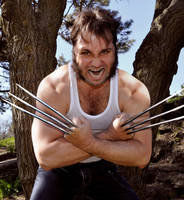 Wolverine3 by AceKomiks