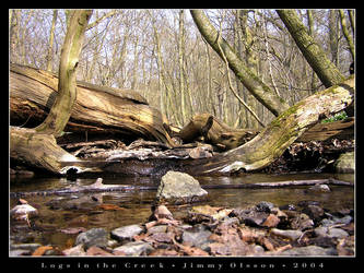 Logs in the Creek by J-i-m-p-a