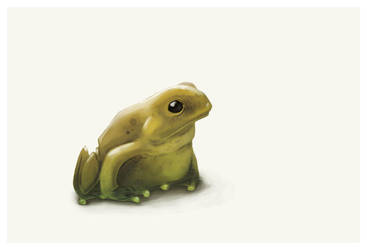 THE frog by TaNBourinE