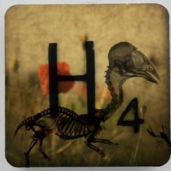 H 4 by igorska
