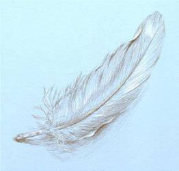 Feather by SKoriginals