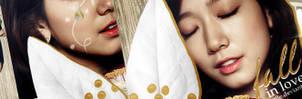 Fall In Love Banner (Park Shin Hye) by Tekmile