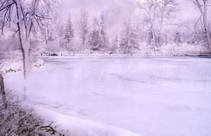 Winter Landscape background by Leina1