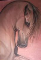 sanguine crayon horse by BasicSilver