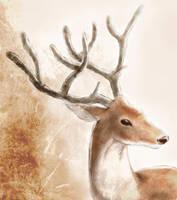 deer by tama89