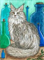 Alchemist cat by Woodswallow