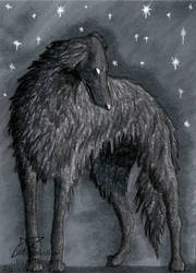 Shadow of the night (ACEO) by Woodswallow