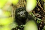 Uganda by elultimodeseo