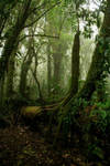 Costa Rica by elultimodeseo