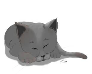 Cat by Sorrowen