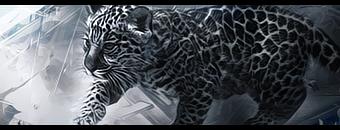 Jaguar Cub sig by SmashLord