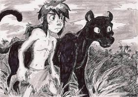Jungle Book - Mowgli and Bagheera by Hukkis