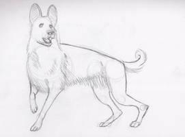 Dog! by Zoph42
