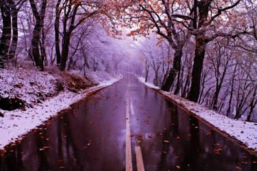 November through my eyes by 9207011401