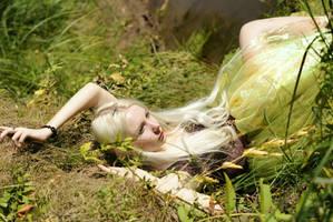 Fairy 3 by LialiaD-stock