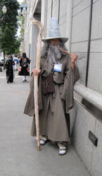 Kumoricon 2010: Gandalf by DaiShutian