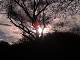 Serenity by luckhasnothing