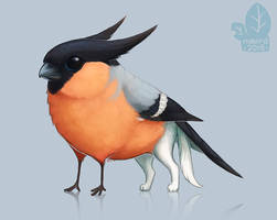 Auction: Bullfinchlett by nybird