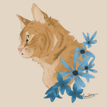 Cat WIP by shaina773