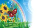 Nano - Ladybird by GruberJan