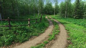 Country Lane by stockkj