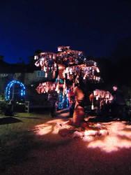 Beaulieu Christmas lights wishing tree by kirk12Lumiere