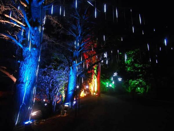 Beaulieu Christmas lights by kirk12Lumiere