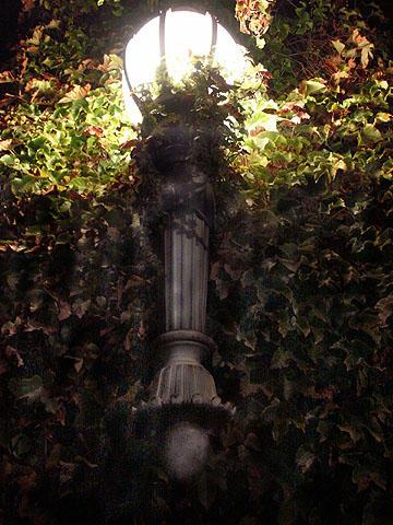 Garden Torch by redtrain66