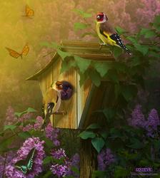 Spring Wonders by IZSTEVE