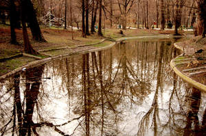 Pond Of The Past by Alexandru1988