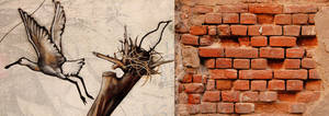 Free From The Wall by Alexandru1988