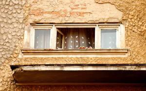 Window Of Pain by Alexandru1988