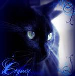 Jocelyner's Kitty by NozomiAkeboshi64