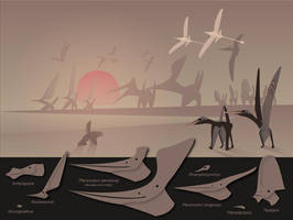 Pterosaur menagerie by nyctopterus