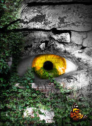 Ancient Eye by needleskane21