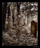 Ghost_cemetery_2 by troyek