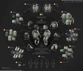 The Anatomy of Model XY3 by moth3R