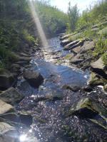 A stream by Torako-chan